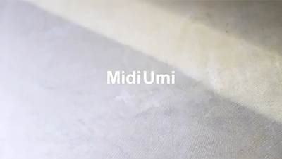 MidiUmi 21 Summer